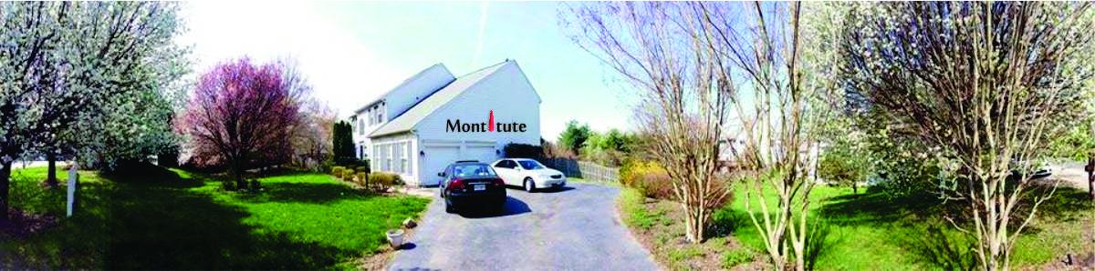 Montitute Building